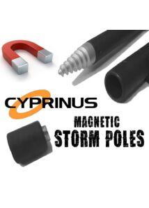 Cyprinus Spiral Slim Mag Stick leszúrók