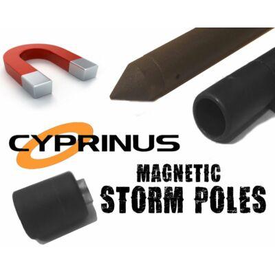 Cyprinus Spiral Slim Mag Stick leszúró Standard 60cm